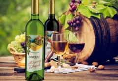 Холдинг «Даймонд» также запустил линию более легких винных напитков - «Южный дворик» и «Магия любви»,